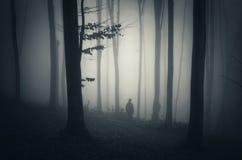 Man i mörk skog med dimma Arkivbilder