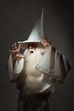 Man i trollkarldräkt arkivbilder