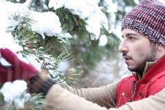 Man i vinter som kontrollerar gran för Arkivbild