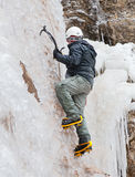 Man with ice axes and crampons. Climbing on icefall royalty free stock image