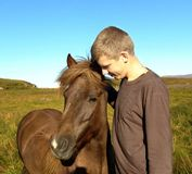 Teenager with Icelandic horse. Young man with brown Icelandic horse in countryside, blue sky background Stock Image