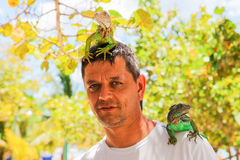 Man with iguana on his shoulder and head Stock Image