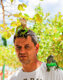 Man with iguana on his shoulder and head Royalty Free Stock Images