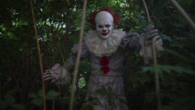 Clown hides in bushes and trees at forest. Man in the image of a Clown hides in bushes and trees at forest stock video footage