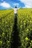Man In Field Royalty Free Stock Photos
