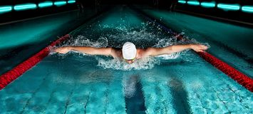 Man In Swimming Pool. Butterfly Swimming Style Royalty Free Stock Photography