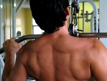 Free Man In The Gymnasium Stock Image - 3156321