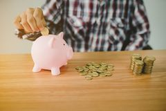 Man insert gold coin into pink piggy bank Stock Images