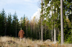 Man inspecting trees in forest Stock Photos