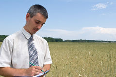 Man inspecting the wheat. Field Royalty Free Stock Photos