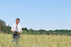 Man inspecting the wheat Royalty Free Stock Images