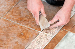 Man installing floor tile Stock Image