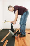 Man installing hardwood floor. With pneumatic nailer royalty free stock photos