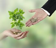 Investing to green business. Man Investing to green business Royalty Free Stock Image