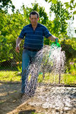 Man irrigated garden. Gardener irrigated garden green watering can in a beautiful spring day Royalty Free Stock Images