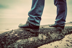 Man in jeans and elegant shoes standing on fallen tree on wild beach looking at sea. Vintage Stock Image