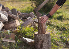 Man in jeans and shirt standing near stump with ax Royalty Free Stock Images