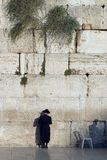 A man is a Jew in a traditional national black hat, a frock coat and stockings stands near the Western Wall, Ha-Kotel ha-Maaravi,. Man is a Jew in a traditional Royalty Free Stock Photos