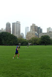 Man jogging at Central Park in an autumn cloudy day Royalty Free Stock Images