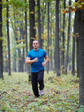 Man jogging in the forest Stock Photo