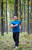 Man jogging in the forest Stock Photography