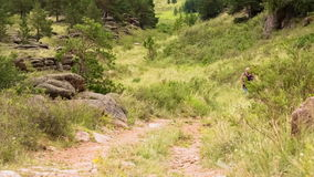 Man Jogging on the Mountain Valley. Middle-aged stock video