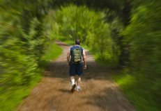 Man jogging in a park. stock photos