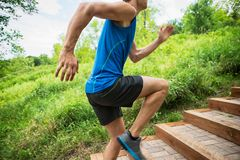 Man Jogging In Park Royalty Free Stock Photo