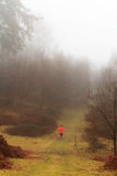 Man jogging in woodland on a foggy misty morning Royalty Free Stock Image