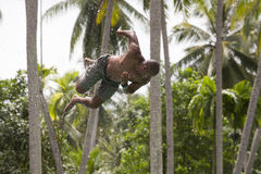 Man jump in the pool in the attraction Slip N Fly on island Koh Phangan, Thailand Stock Photos
