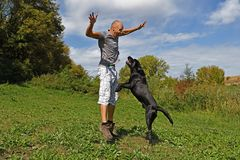 Man is jumping with dog. In the park at sunny day Stock Photo