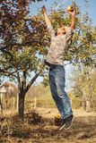 Man jumps for pears royalty free stock image