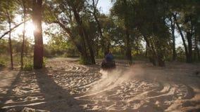 Man körning av atv på sand i skog på solnedgången Mannen som kör kvadratcykeln parkerar in arkivfilmer