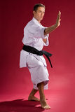 Man in karate pose Royalty Free Stock Photos
