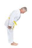 Man in karate pose Royalty Free Stock Image