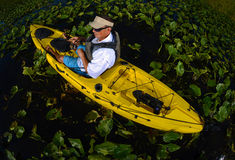Man kayak fishing in lily pads Royalty Free Stock Photo