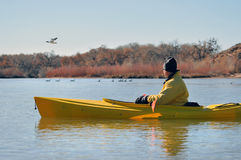 Man in kayak watching birds. Man in yellow kayak watching ducks and geese on the Rio Grande in New Mexico Royalty Free Stock Photo