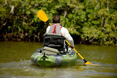 Man kayaking in mangroves Stock Photo