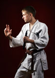 Man in kimono Stock Photography
