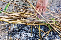 Man kindling a tuft of straw Royalty Free Stock Photos