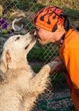 Man kissing a dog labrador Stock Photo