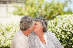 Man kissing his wife in the garden Stock Images