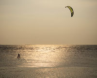 Man with kite surving standing in sea water against evening sun Royalty Free Stock Photo
