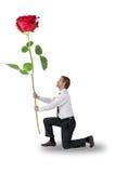 Man kneeling a rose holding Royalty Free Stock Photos