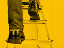 Man on ladder. Royalty Free Stock Image