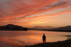 Man on the lake at sunset Stock Photography