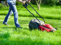 Man with lawnmower royalty free stock images