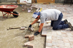 Man laying down paver. Young man laying down paver as part of landscaping Stock Photos