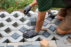 Man laying a garden path with grass paving blocks Stock Images