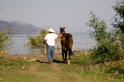 Man leading horse to lake Royalty Free Stock Photography
